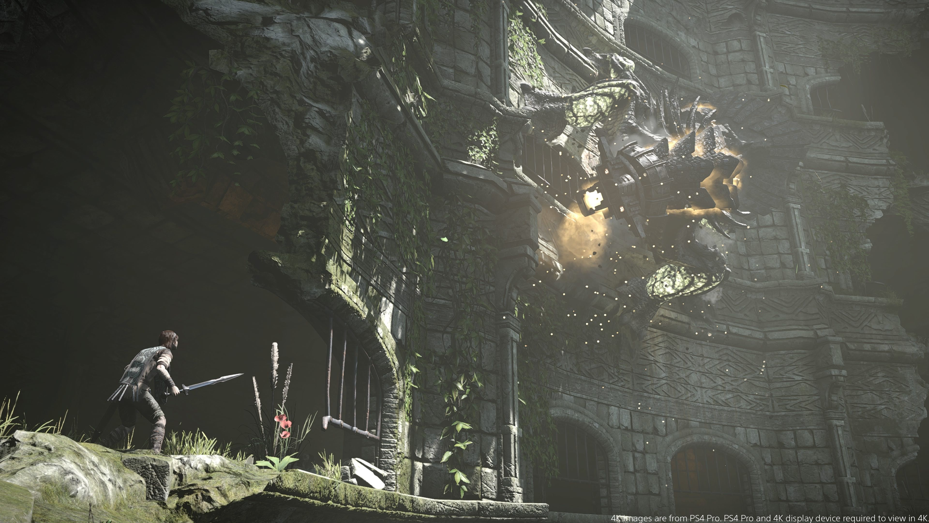 Recenze Shadow Of The Colossus (PS4)